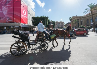 Palermo, Sicily , Italy - November 5, 2018: Man riding in a horse drawn carriage in a square next to Teatro Massimo