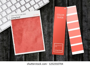 Palette Color of the year 2019 Living Coral. Livingcoral