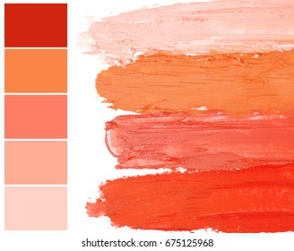 Palette with salmon color and lipstick smears on white background