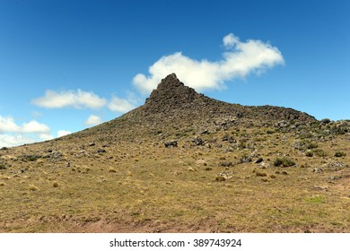 PALI AIKE, CHILE - NOVEMBER 11,2014:The place inhabited by ancient Indian tribes in the national Park Pali Aike.