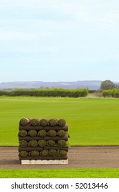 a pallet of freshly cut turf rolled and stacked ready for sale in springtime