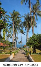 Palm avenue to the sea. Resort Lamai on Koh Samui.