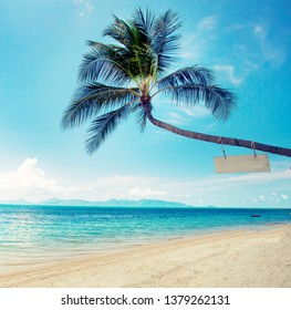 palm background with a beach in vintage color