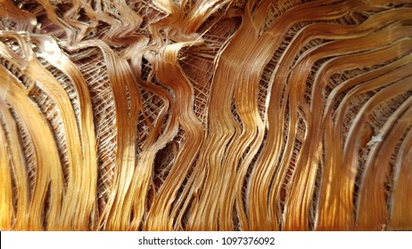 Palm bark texture in shades of orange and bronze colors. Fibrous palm tree trunk surface closeup. Extraordinary natural background