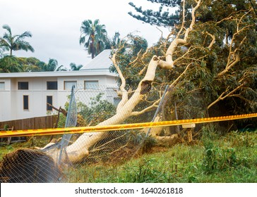 Palm Beach, NSW/Australia, Feb. 10, 2020. Heavy storms and torrential rain brought down numeral trees and powerlines blocking roads and leaving thousands of people without power. Many roads flooded.