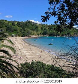 Palm Beach on Waiheke Island in Auckland, New Zealand