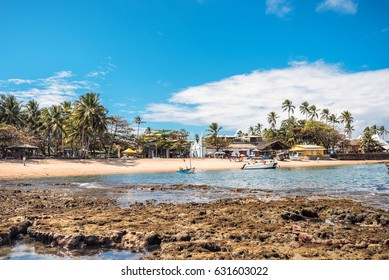 palm beach of  Praia do Forte in Brasil with fishing boats