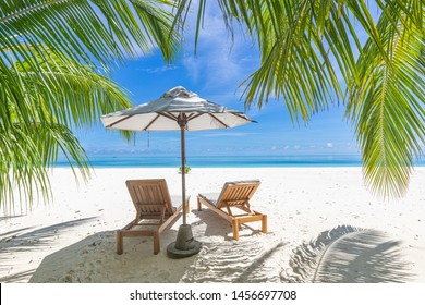 Palm beach in tropical idyllic paradise island. Chairs on white sand under blue sky with endless sea view. Exotic beach landscape, perfect summer vacation or holiday background, bright travel scenery