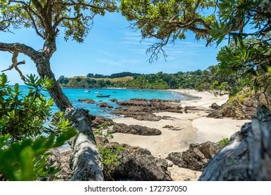 Palm Beach view, Waiheke Island - New Zealand