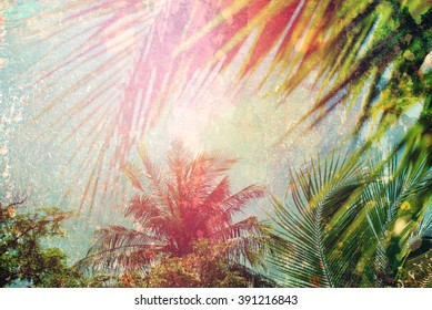 Palm Branches Leaves Sun Light Hot Nature Landscape Tropical Background Holiday Travel Design Toned Shabby Vintage Effect