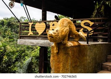 palm civets are kept in captivity to produce Kopi Luwak