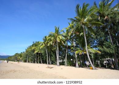 Palm Cove beach of Cairns, Australia
