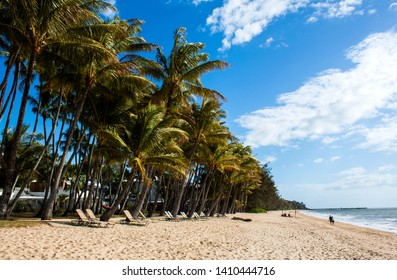 PALM COVE, QUEENSLAND, AUSTRALIA - 22 AUGUST 2011: The beautiful North Queensland holiday destination of Palm Cove with palm trees and deck chairs looking out over the Coral Sea.