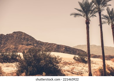 Palm Desert California Area. Palm Trees, Desert Sand Dunes and the Mountain. Southern California, United States