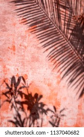 Palm frond shadows abstract background on textured red plaster wall