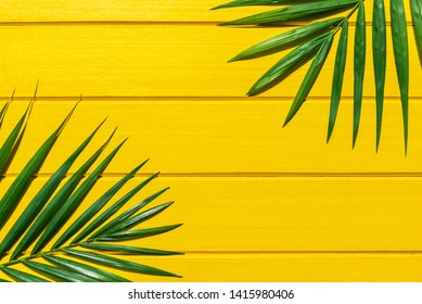 Palm green leaf on yellow wood background view from above.