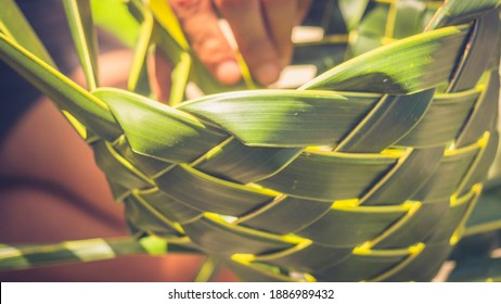 palm leaf artist in Mexico