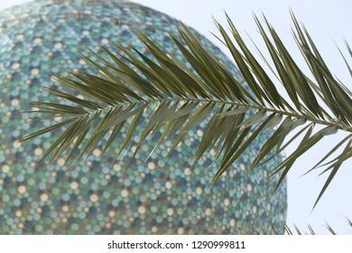 Palm leaf in Kuwait City, Kuwait.