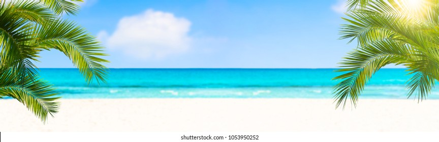 palm leaves in front of the blue sea
