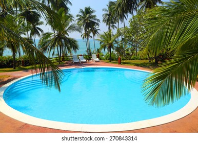 palm leaves in front of the swimming pool by the sea on a tropical resort