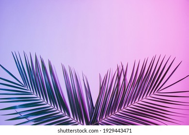 Palm leaves with neon colors. Minimal flat lay composition with copy space. Tropical nature concept.