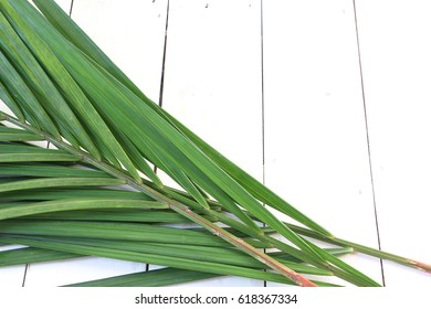 Palm leaves on white wooden palette, for palm sunday celebration