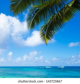 Palm leaves over Pacific ocean in sunny day on  Poipu beach in Hawaii, Kauai, USA