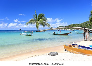 Palm and long tail boats on tropical beach. Koh Tao island, Surat Thani Province, Thailand