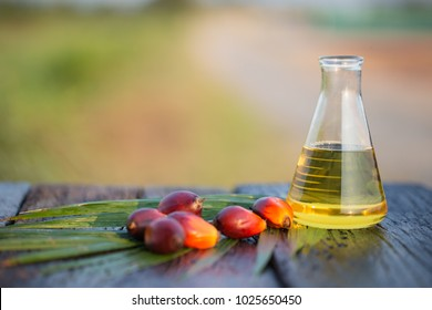 Palm oil in glass bottle Product of refined palm oil Top to the biodiesel. Alternative energy