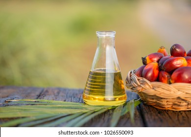 Palm oil produced from palm oil distillation