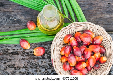 Palm oil is the product  of oil palm tree.