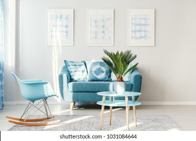 Palm on light blue, round table standing next to a rocking chair and sofa in bright living room interior