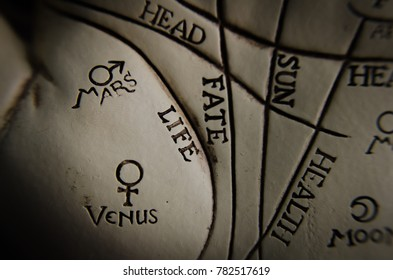 Palm reading lines guide in macro mars and venus
