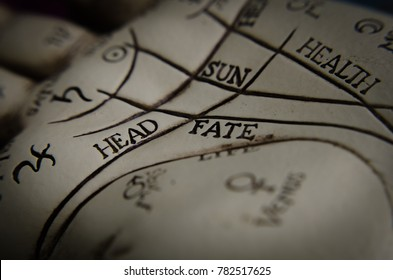 Palm reading lines guide in macro head and fate