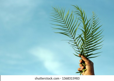 Palm Sunday concept. Young woman hold palm leaves with bright blue sky background. Happy Palm Sunday!