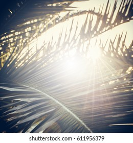 Palm Sunday square illustration with palm branches. Vintage retro edit with sun flares and rays.