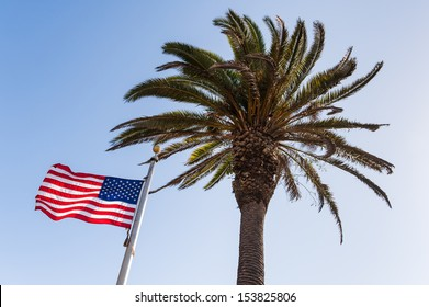 The palm tree and the american flag under the blue sky