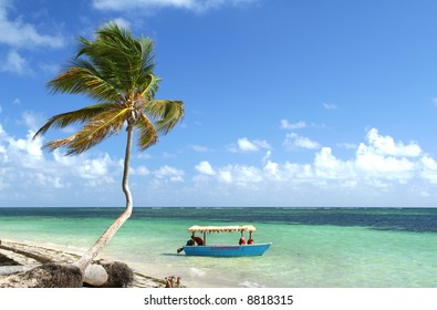 Palm tree and boat at a stunning white sand tropical beach, Punta Cana, Dominican Republic