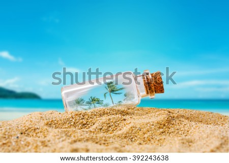palm tree in bottle on sand over blue sea background, abstract background to time for vacation.