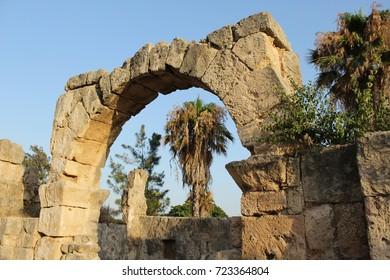 Palm tree framed by Greek ruins in Tyre