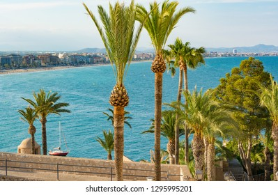 Palm tree gardens in Peniscola castle., an ancient village on the Mediterranean sea. Castellon province. Spain.