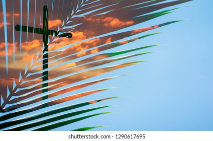 Palm Tree Leaves raise up on blue sky with Holy Cross on sunset background.The Cross symbol of christian and Jesus Christ.Good friday and easter day concept.The Feast of Corpus Christi concept.