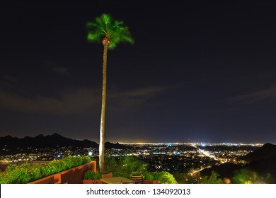 Palm tree moving in the wind with city lights of Phoenix at night.