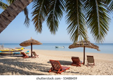 Palm tree on the beach, deckchairs, umbrellas and boats
