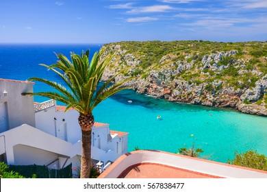 Palm tree overlooking Cala Porter bay with turquoise sea water, Menorca island, Spain