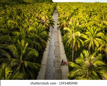 Palm Tree Road at Siargao, The Philippines - Aerial Photograph