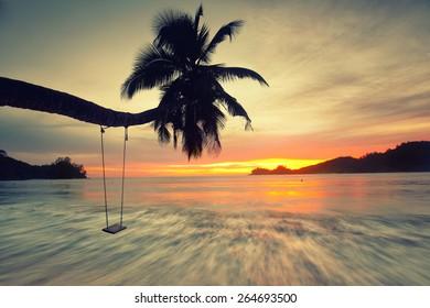 palm tree sunset golden blue sky back light on seychelles island