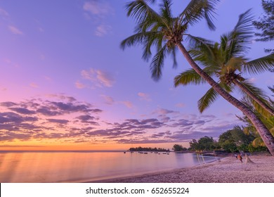Palm tree sunset at Pereybere bay - Mauritius beach