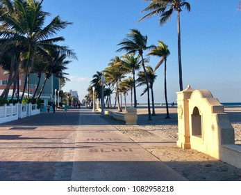 Palm trees along Hollywood Beach Boardwalk in Florida on a sunny day.