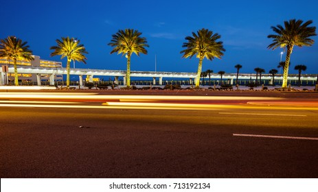 Palm trees along a road in Biloxi, Mississippi at night